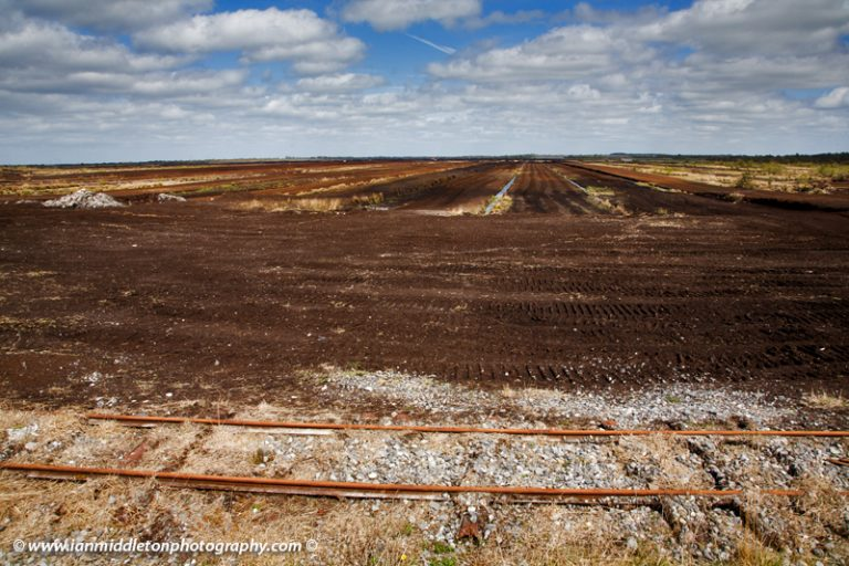 The old railway line through the boglands at the Lough Boora Parklands, County Offaly, Ireland
