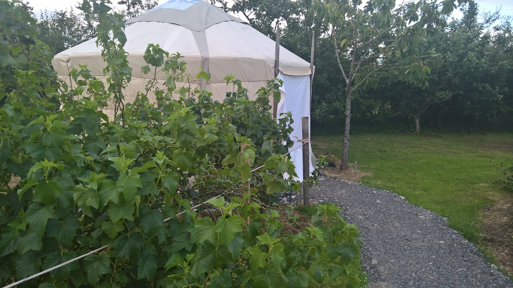 YURT FOR SALE – COUNTY OFFALY