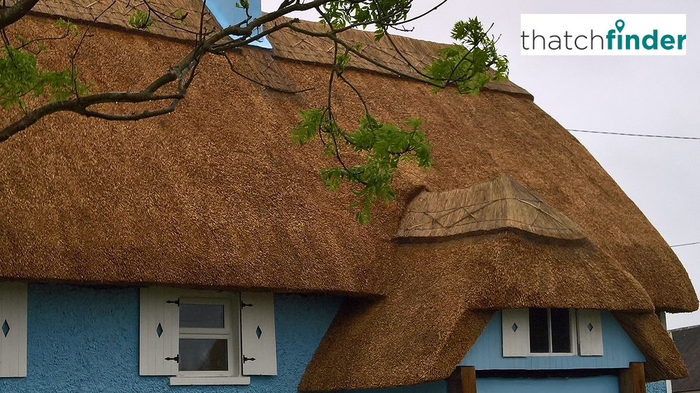 Thatch Finder – Your Adventure into the World of Thatch, Thatched and Thatching